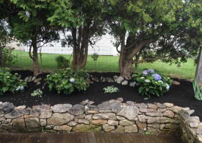 Landscaping 1b